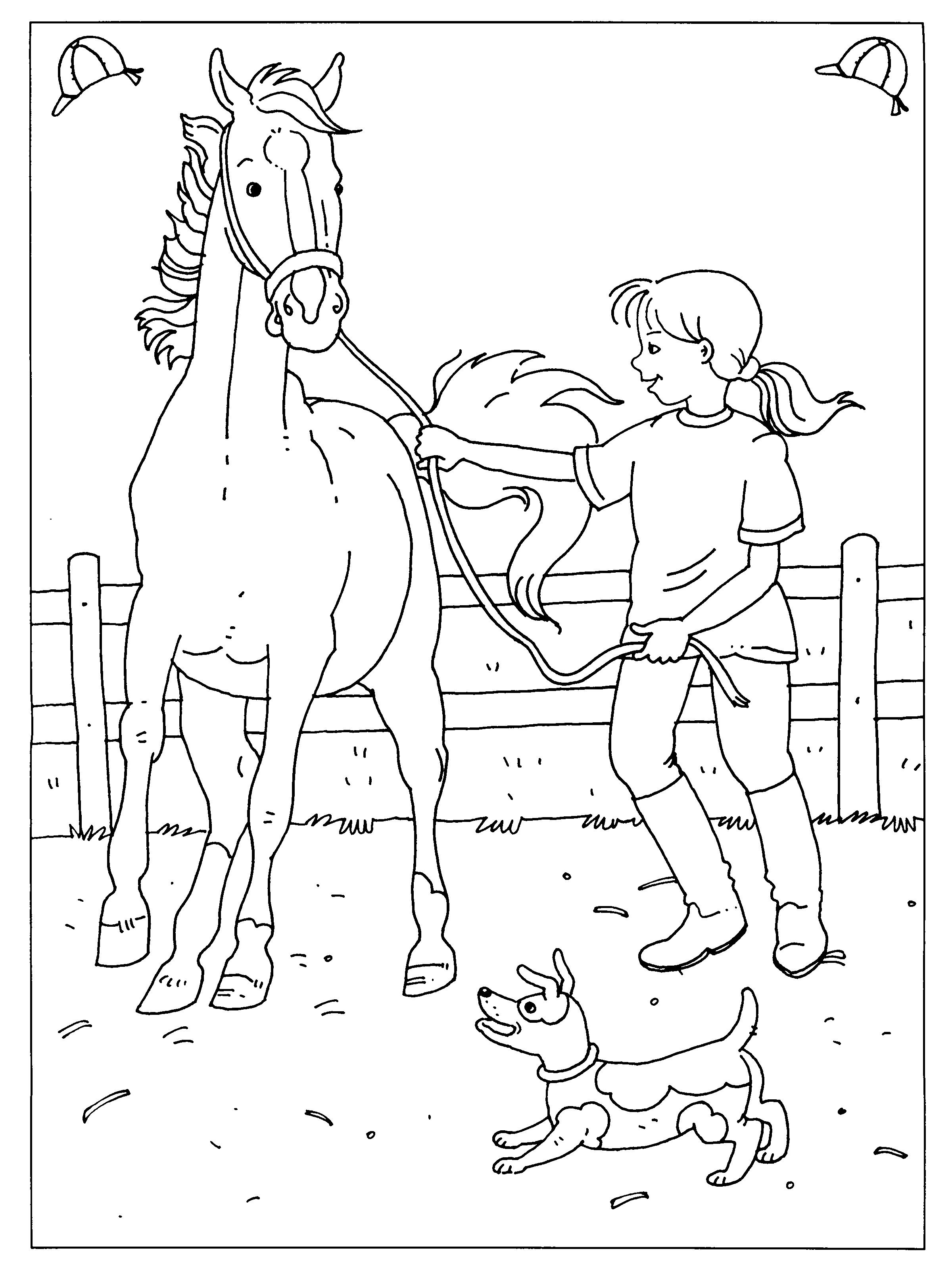 Luxe Kleurplaten Van Paarden En Veulens